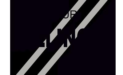 Logo Dallinger_400-01